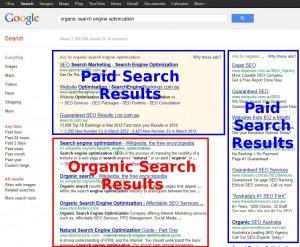 Organic Search Google