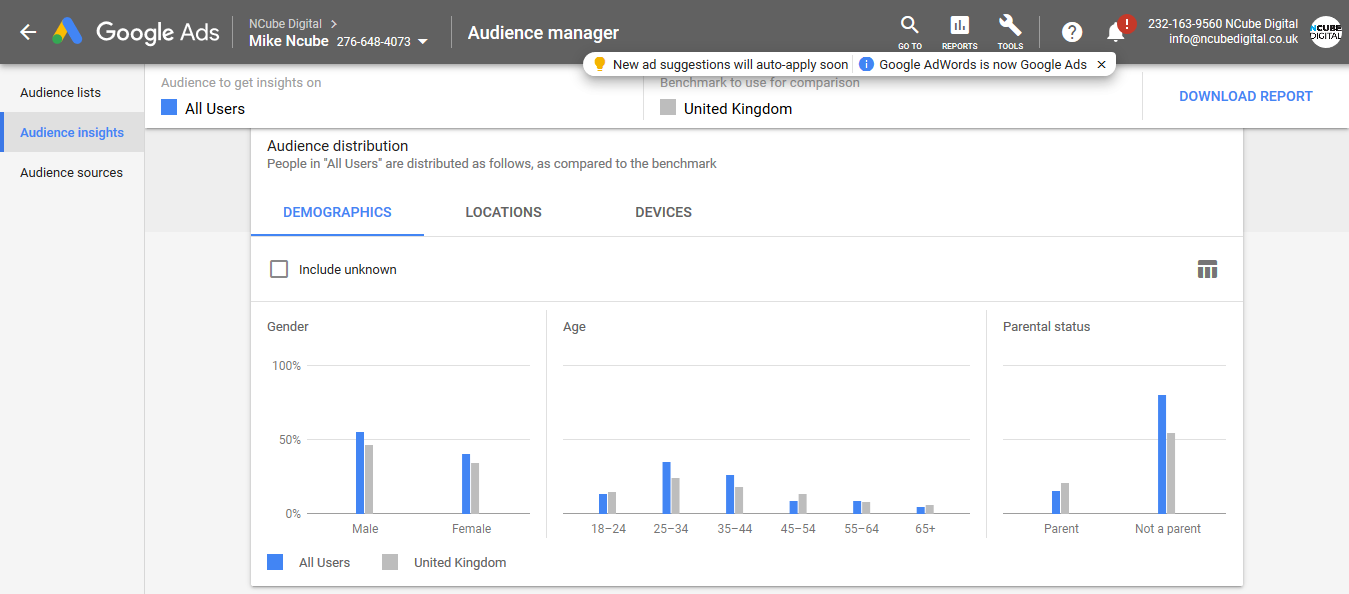 Remarketing Audience Insights